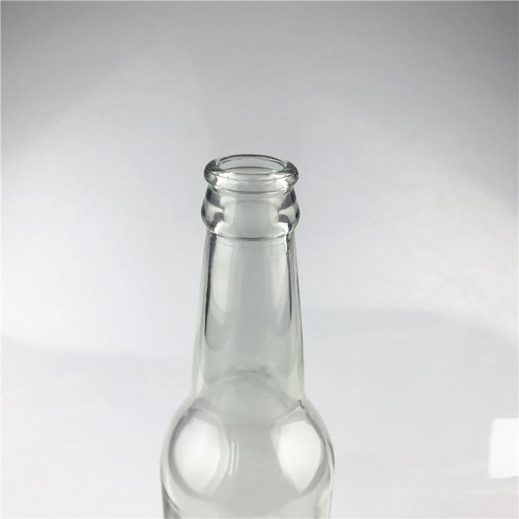 beer bottle (5)